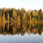 Impressionen Herbst Finnland (© Tarja Prüss)