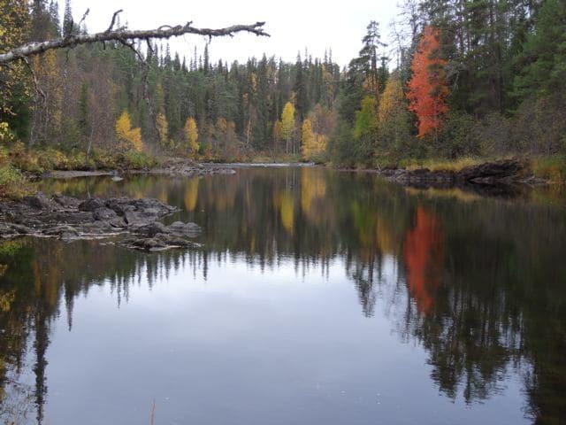 Oulanka Nationalpark im Herbst - Finnland ©Foto: Tarja Prüss | Tarjas Blog - Reiseblog Finnland