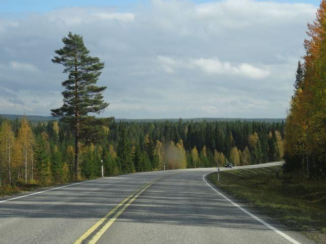 Endlose Straßen in Finnland Lappland ©Foto: Tarja Prüss | tarjasblog.de
