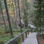 steile Holztreppe im Wald - Oulanka Nationalparl im Herbst. Finnland ©Foto: Tarja Prüss | Tarjas Blog - Reiseblog Finnland