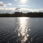Blick vom Koli auf den Pielinen See ©Foto: Tarja Prüss | Tarjas Blog - Reiseblog Finnland