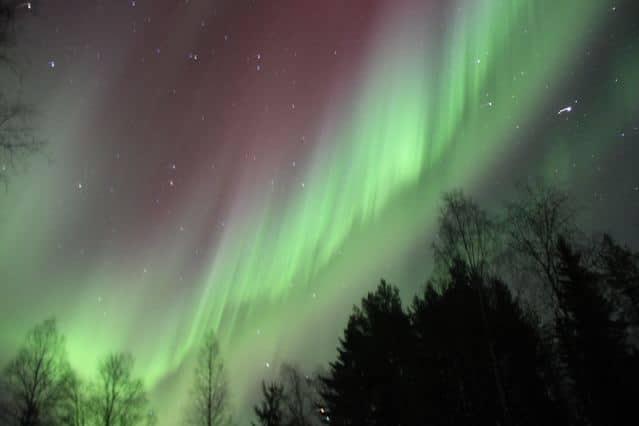 Polarlicht in Finnland (copyright: tarja prüss)