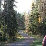 Der Weg zur Straße. Haukipudas Finnland ©Tarja Prüss