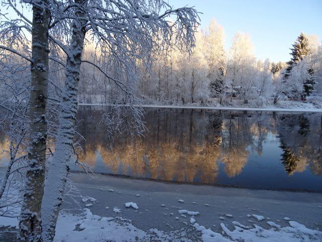 Haukipudas in Finnland: Flusslandschaft mit verschneiten Bäumen © Tarja Prüss | Tarjas Blog - Alles über Finnland