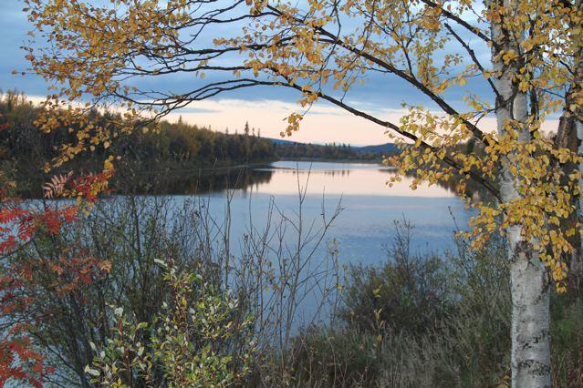 Fotokurs Fortschritte: Herbst am Fluss ©Foto: Tarja Prüss   Tarjas Blog - Alles über Finnland
