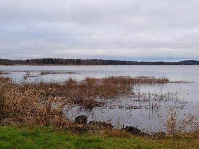 Oravainen, Finnland. Copyright: tarja prüss