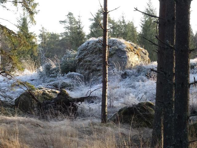 Frost Impressionen - Region Rauma Finnland - gefrorene Gräser ©Foto: Tarja Prüss | Tarjas Blog - Alles über Finnland