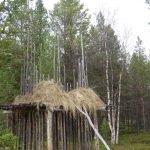 siida museum inari scheune