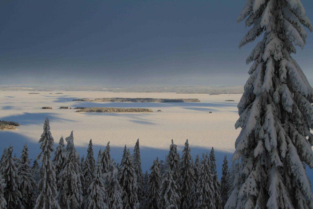 Finnland: Aussicht vom Koli ©Tarja Prüss | Tarjas Blog