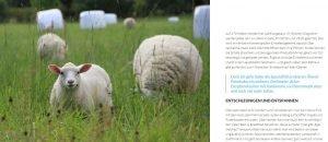 Dein Finnland: Screenshot der Internetseite www.dein-finnland.de: aland1