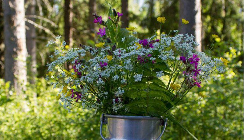 Sommerblumen in Milchkanne (©Foto: Tarja Prüss)