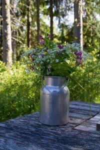 Mittsommer Finnland (© Tarja Prüss)