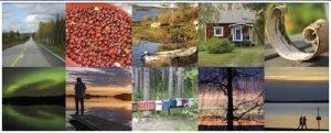 111 Gründe Finnland zu lieben. Stimmen zum Buch. Collage
