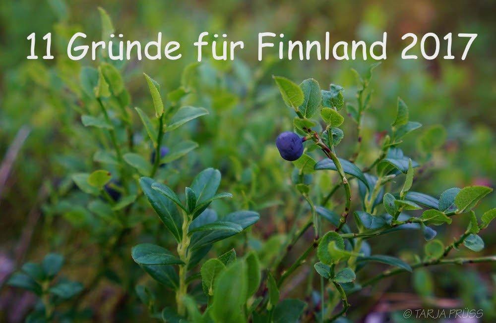 Urlaub in Finnland: Heidelbeere im Wald (Detail) Foto Copyright: Tarja Prüss