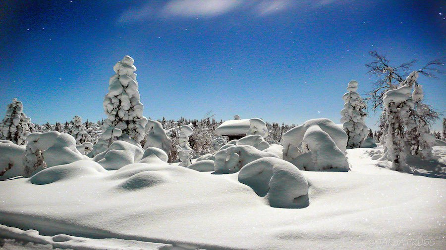 dick verschneite Landschaft in Hetta Enontekiö Lappland ©Foto: Tarja Prüss | Tarjas Blog - Reiseblog Finnland