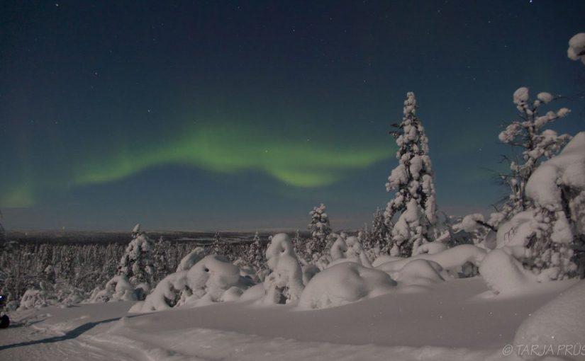 Polarlichter in Enontekiö Lappland ©Foto: Tarjas Blog