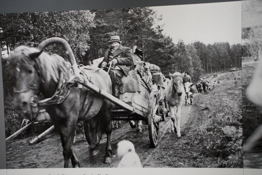 Das versteckte Finnland: Flüchtlingstrecks aus Karelien 1944. Quelle: Kansallismuseum Helsinki.