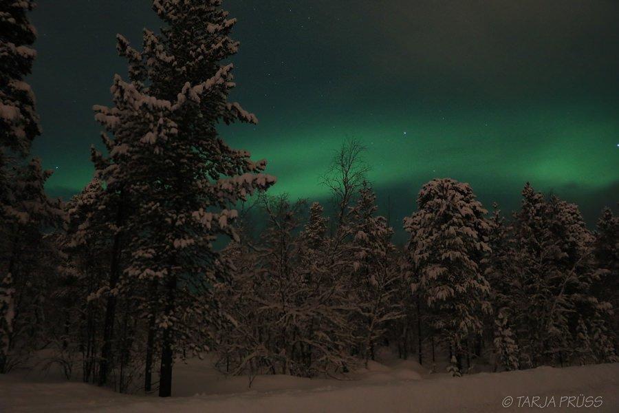 Wo sieht man Polarlichter in Lappland ? In Inari - Wolken reißen kurz auf und geben den Blick frei auf grüne Polarlichter © Tarja Prüss   Tarjas Blog - Alles über Finnland
