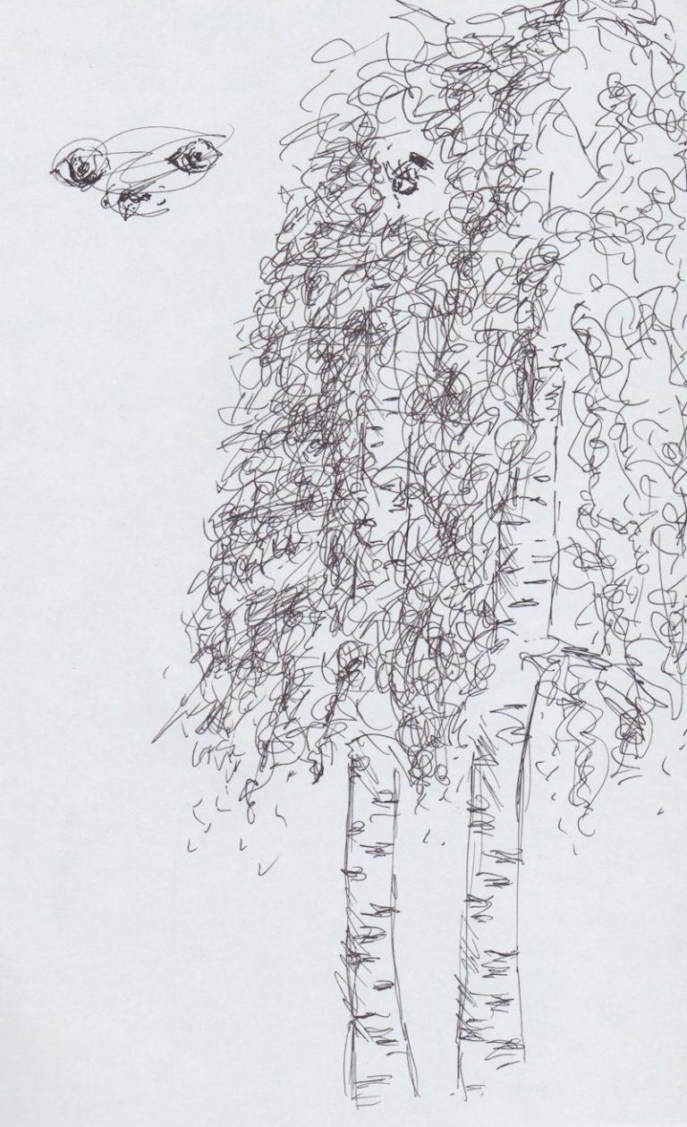 skizze mit Papier und Stift: Birken in Haukipudas Finnland ©Tarja Prüss | Tarjas Blog - Alles über Finnland