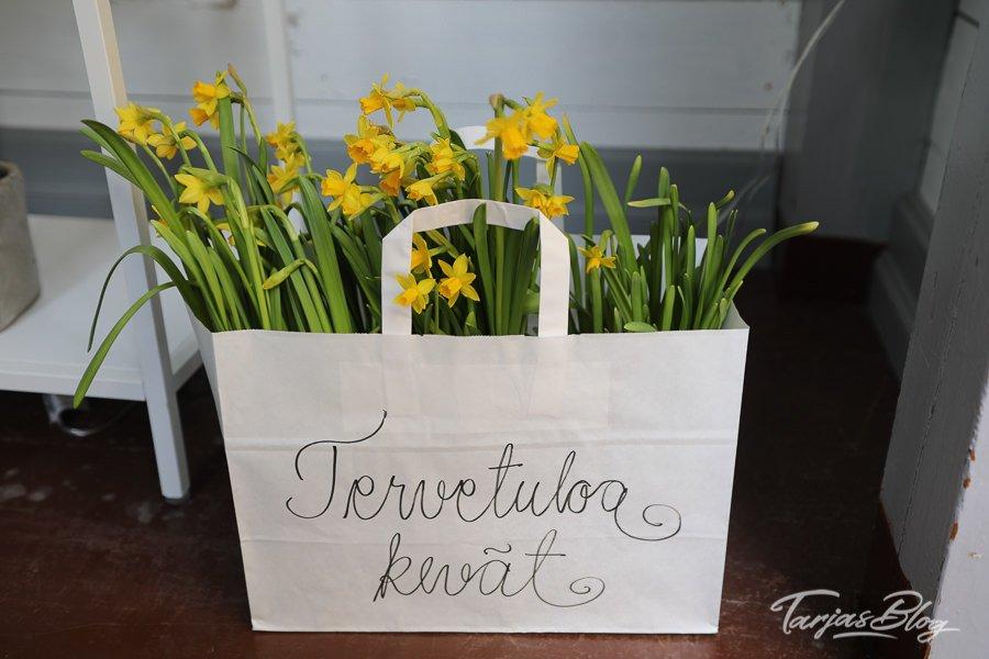 Eine Tüte voller Frühlingsblumen - Aufschrift: Tervetuola Kevät = Willkommen Frühling ©Foto: Tarja Prüss | Tarjas Blog - Reiseblog Finnland