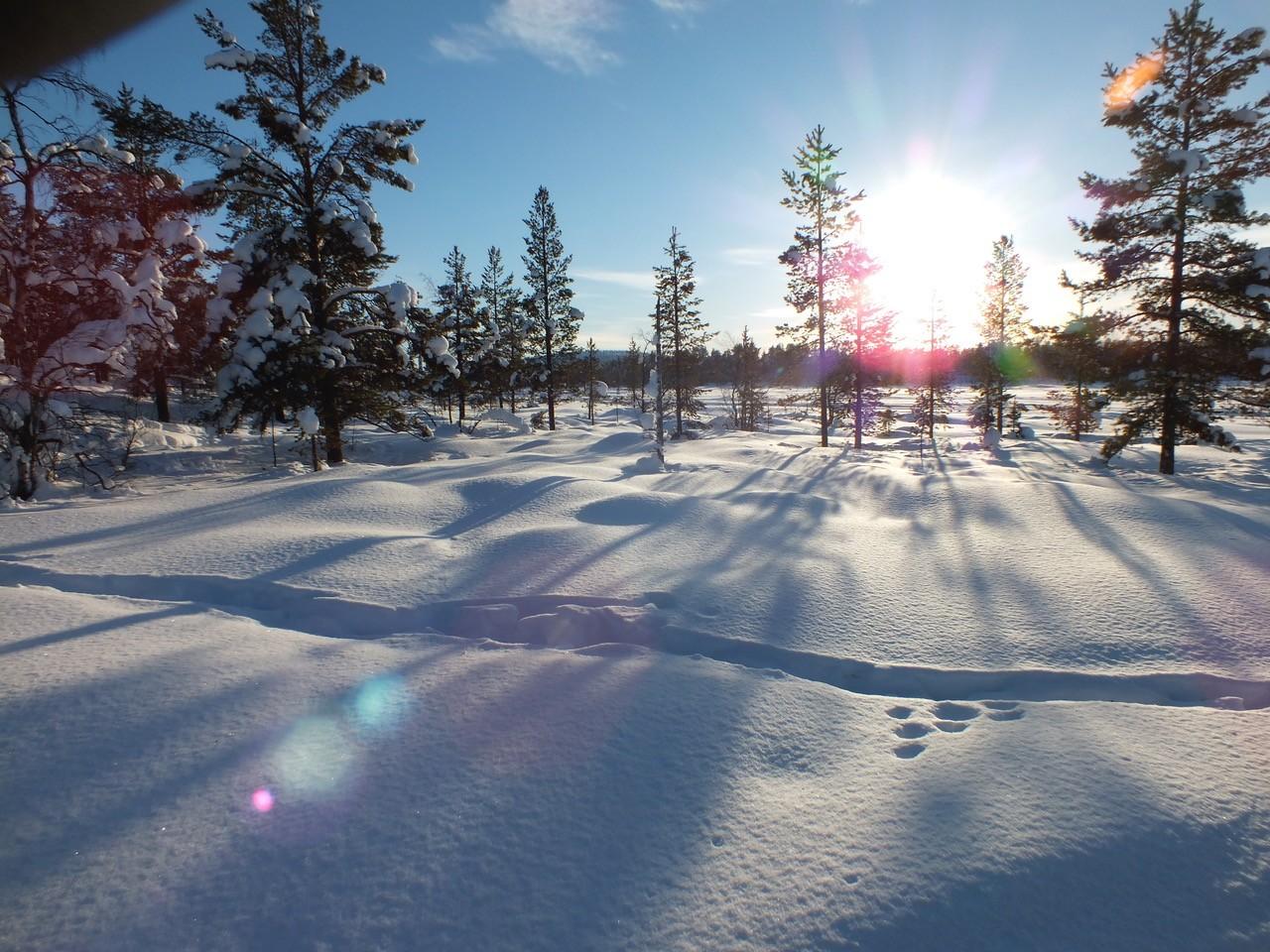 Enontekiö Lappland im Winter bei untergehender Sonne und Schnee ©Foto: Tarja Prüss | Tarjas Blog - Reiseblog Finnland