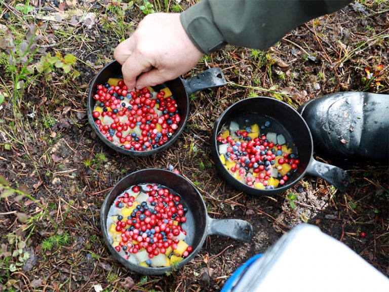 Kochen am Lagerfeuer auf der Insel Honkinen, Region Vuokatti - Finnland ©Foto: Tarja Prüss   Tarjas Blog - Reiseblog Finnland
