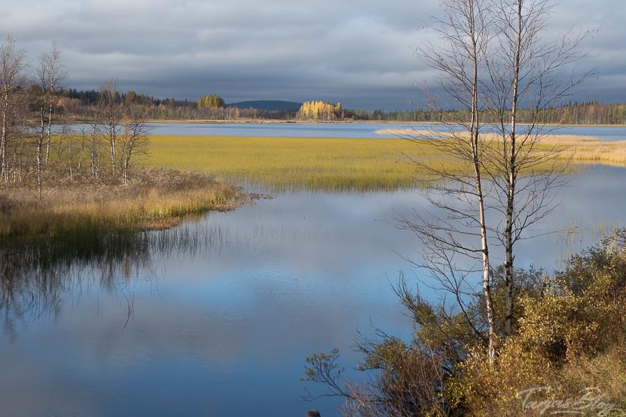 Lappland Reise - Seenlandschaft im Herbst ©Tarja Prüss - Tarjas Blog - Alles über Finnland