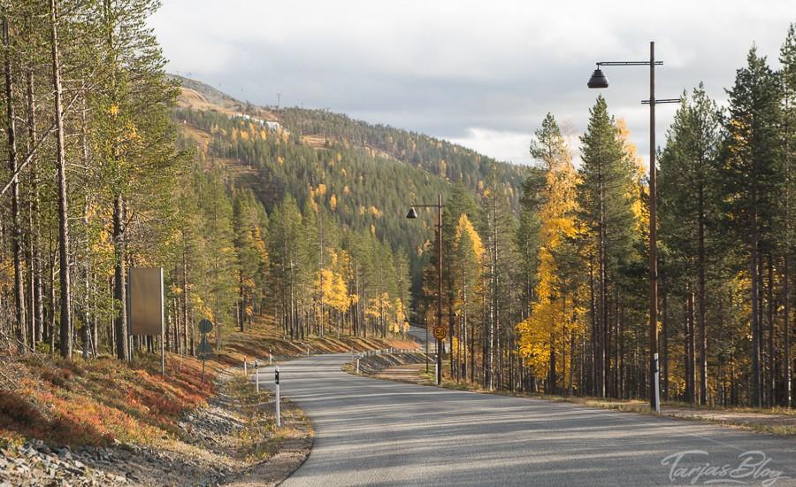 Lappland Reise - Straße in Lappland im Herbst ©Tarja Prüss - Tarjas Blog - Alles über Finnland