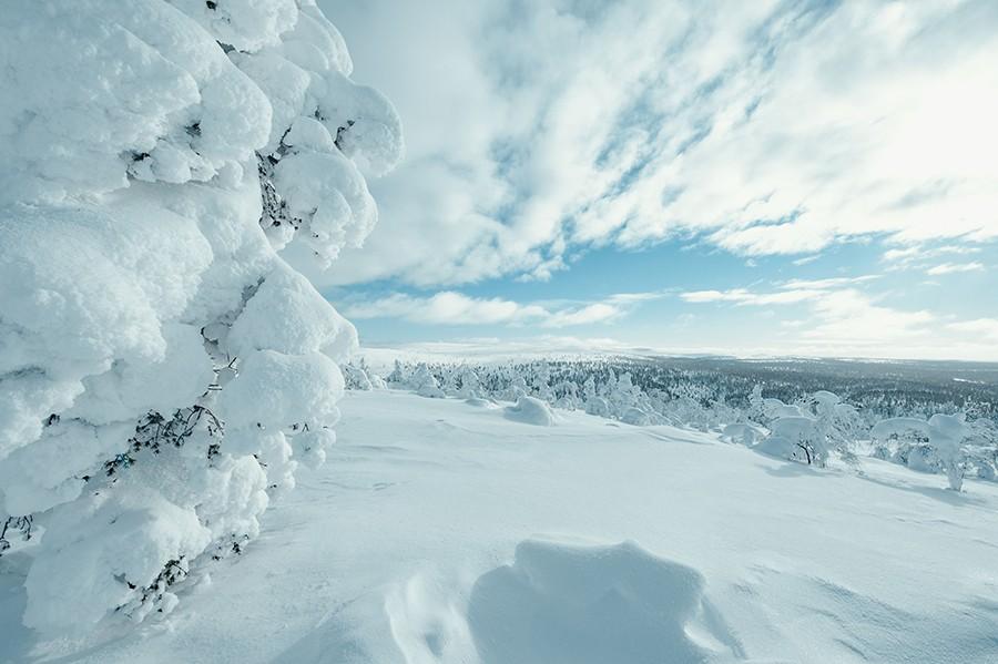 Arctic Circle Szene ©Arctic Circle