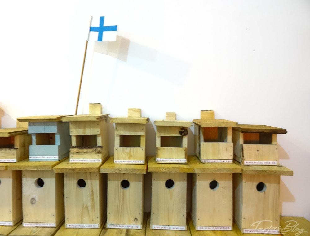 Vogelhaus Morgenvogel